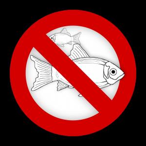 Nahrungsmittelunverträglichkeiten, Fisch